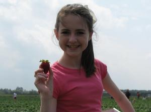 Strawberry picking 004