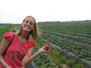 Strawberry picking 013